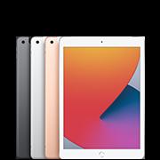 10.2インチ iPad (第8世代)